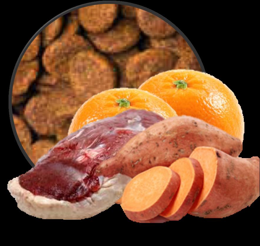 Graanvrij glutenvrij hypoallergeen hondenbrok Een met Sinasappel