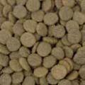 Welby graanvrij hondenvoer