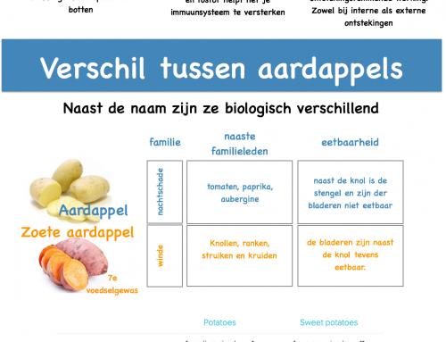 infografic zoete aardappel voor betere graanvrije hondenbrokken