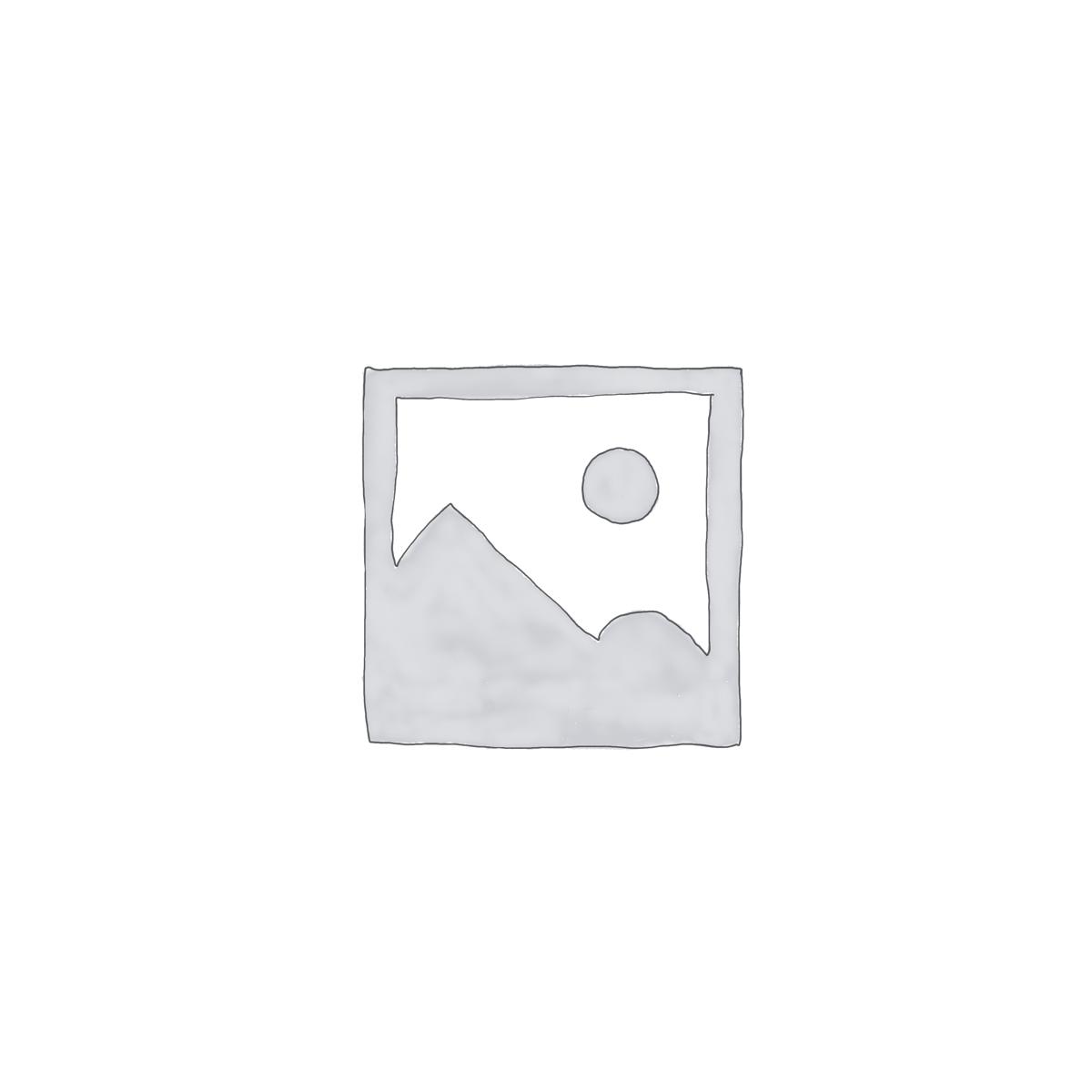 Graanvrije hondenbrok